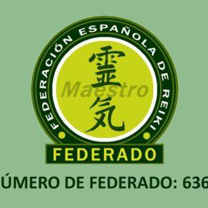 Logo REIKI